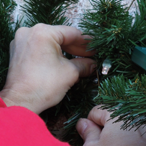 Christmas light maintenance service